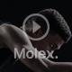 Molex视频